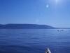 kayak1-jpg