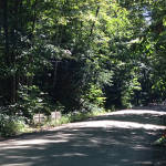 "Haliburton 50 mile race report…""Chicken Soup"""